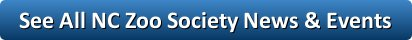 society_news_events_button