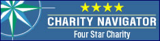 234x60_charity_navigator
